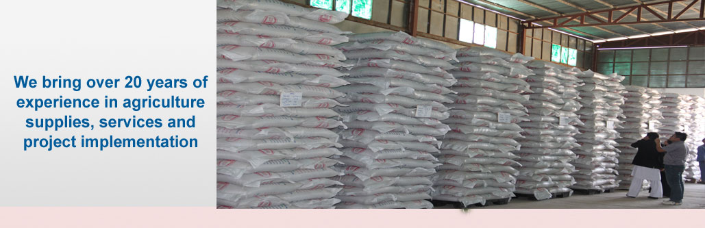 Noor Agriculture Seeds Company Wheat Seed Storage